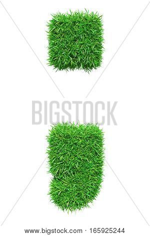 Green grass semicolon, isolated on white background. 3D illustration