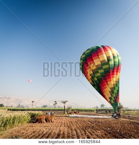 The Nile floodplain near Luxor, Egypt with a hot air balloon being inflated.