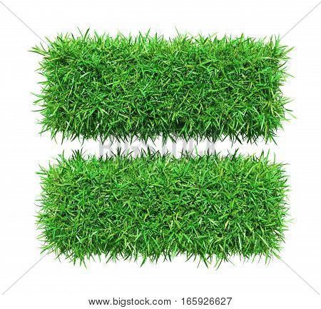Green grass equally, isolated on white background. 3D illustration
