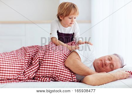 Cute Grandson Gently Wakes Hid Grandpa Up