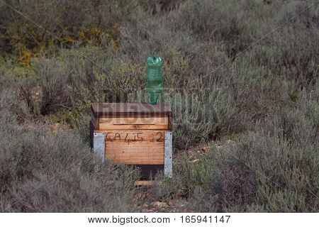 Simple wooden beehive in little karoo desert vegetaton, South Africa