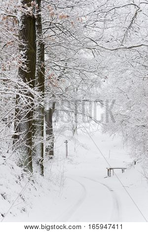 A hiking trail in Kahla, Thuringia, in winter snow