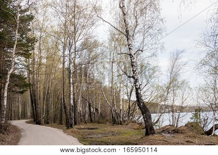 Winding road in forest along lake in early spring. Photo taken on lake Shartash, Russia, Urals, Sverdlovsk region.
