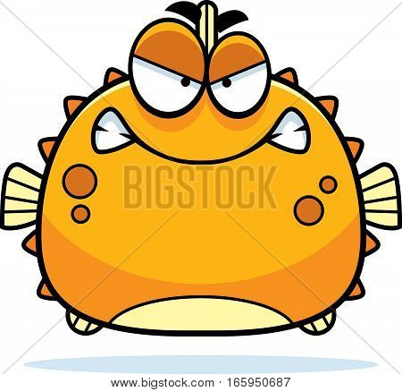 Angry Little Blowfish