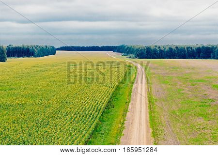 View of the road in the field field from the top height