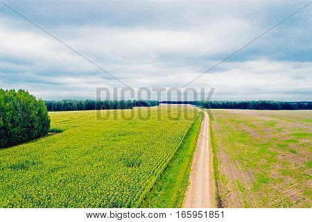 View of the road in the field from the top height