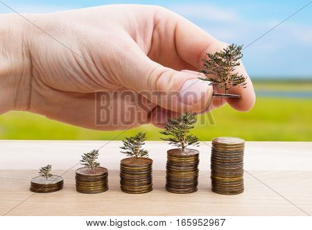 Male hand putting money coin with tree stack growing business