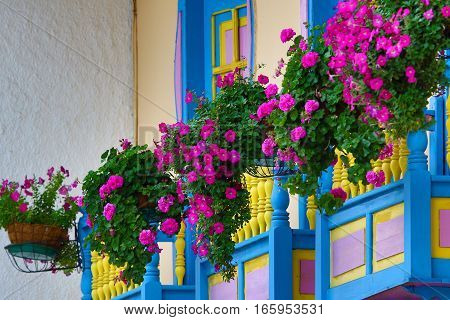 September 23, 2016 Filandia, Colombia: colonial style wooden balconies decorated with blooming flowers in the centre of the coffee producing small town