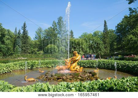 SAINT PETERSBURG, RUSSIA - JULY 03, 2015: Triton Fountain in the Lower Park of Peterhof on a Sunny day in July