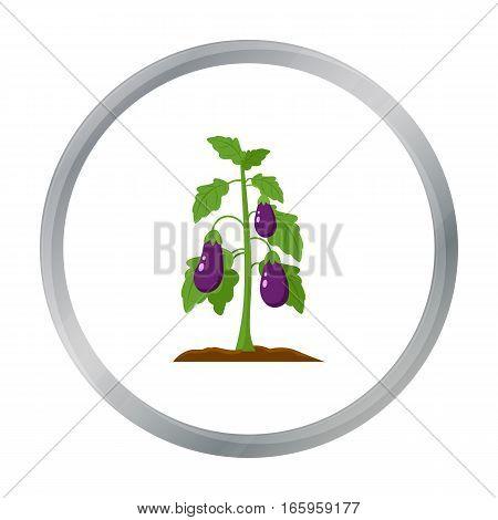 Eggplant icon cartoon. Single plant icon from the big farm, garden, agriculture cartoon. - stock vector
