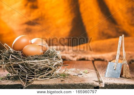Fresh chicken eggs in nest on wood boards. Tiny shovel and broom next to them