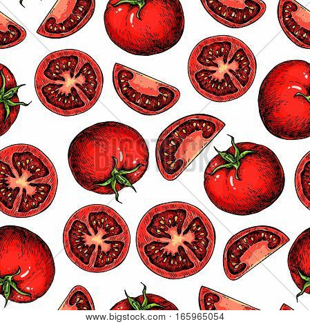 Vector tomato seamless pattern drawing. Isolated tomatoes and sliced pieces. Vegetable artistic style illustration. Detailed vegetarian food drawing background. Farm market product.