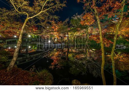 The Eikando temple night illumination during the month of November