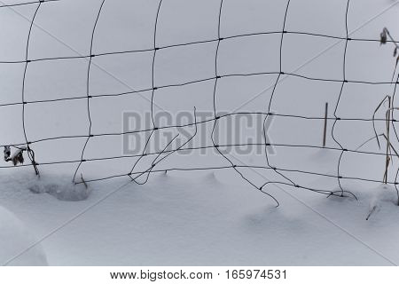 Detail of a wire mesh fence in snow.