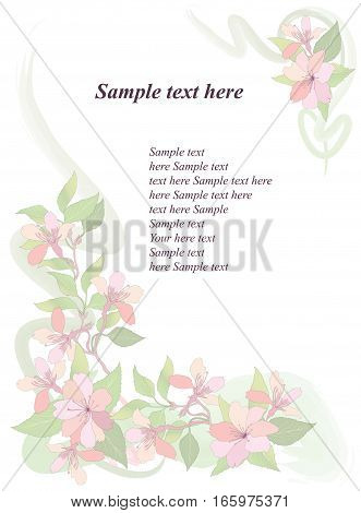 Floral spring background. Flower apple tree branch blossom.