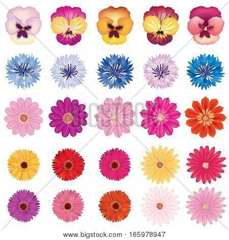 Summer-flower-set-1A