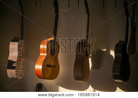a row of classical unfinished guitar at workshop in sunlight.