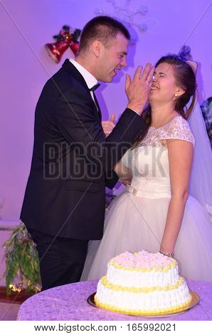 Groom bride rubs the nose of a cream cake.