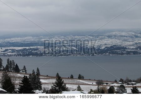 View of the orchards and lake - winter scenic