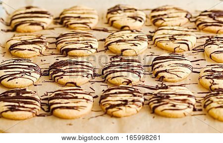 Dark chocolate covered butter cookies with on a baking paper