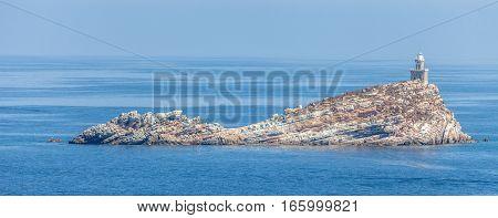 View of the small Scoglietto Island in front of Portoferraio Elba Island Coast Italy.