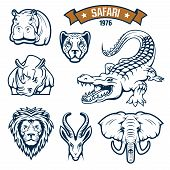 Hunting club emblems. African safari hunt animals vector isolated icons of lion, cheetah panther or leopard, antelope, alligator crocodile, elephant, hippopotamus and rhinoceros. Vector signs, badges and ribbon for savanna hunter sport poster