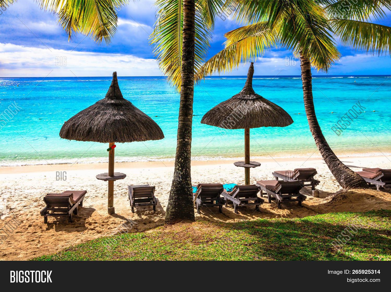 Tropical Beach Scenery Image Photo