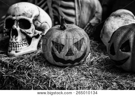 Scary halloween skulls, monstrous death decoration and death poster