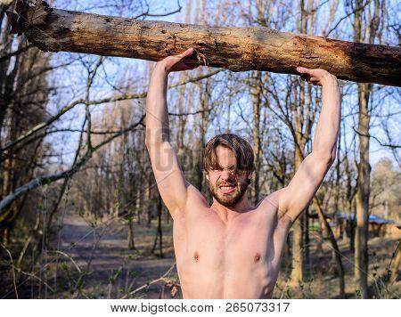 Alone In Woods. Lumberjack Or Woodman Sexy Naked Muscular Torso Gathering Wood. Man Beaded Brutal Se