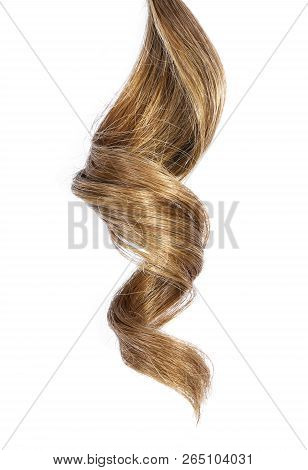 Beautiful Brunette Hair, Isolated On White Background. Long Brown Hair Tail, Curly And Healthy Hair,