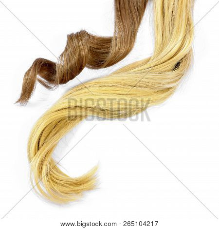 Beautiful Brunette And Blonde Hair Tails, Isolated On White Background. Long Brown And Blond Hair Ta