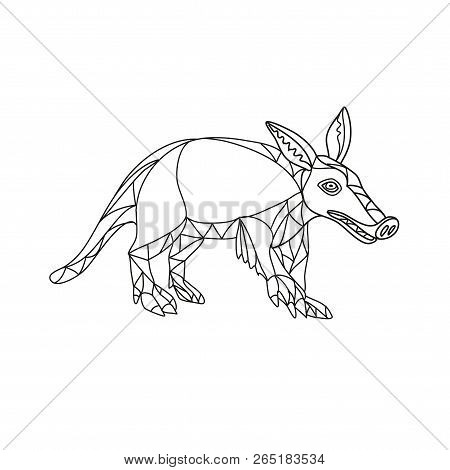 Mono line illustration of an aardvark, a medium-sized, burrowing, nocturnal mammal that is an insectivore with a long pig-like snout done in black and white monoline style. poster
