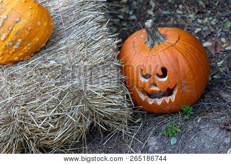 Angry Pumpkin Sitting Next To Hay Bail