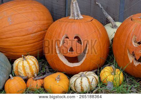 Smiling Carved Pumpkin Sitting In Front Of  Fence
