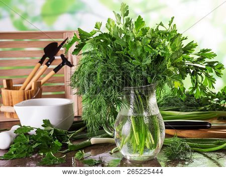 Fresh Herbs From Garden Parsley And Dill In Drops Of Water On A Light Background