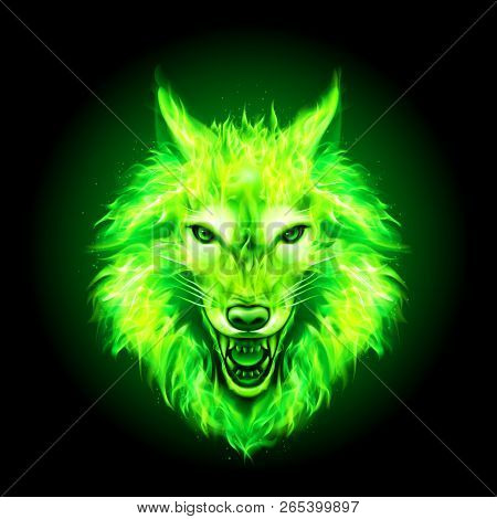 Head Of Aggressive Fire Woolf. Concept Image Of A Green Wolf And Flame On A Black Background