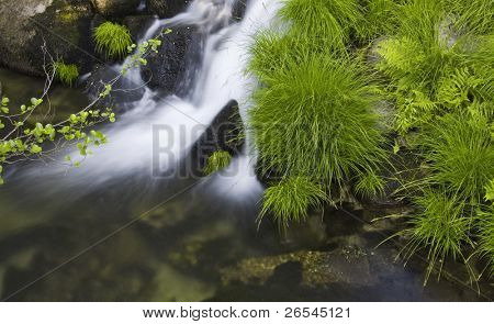 Waterfall on the mountain river
