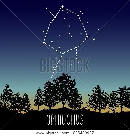 Ophiuchus, Hand Drawn Thirteenth Zodiac Sign Constellation In A Twilight Sky Over The Deciduous Fore