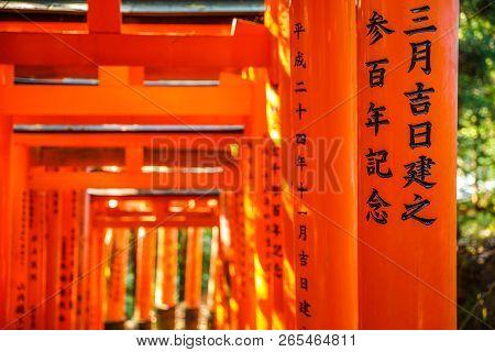Kyoto, Japan - April 28, 2017: Thousands Vermilion Torii Gates Of Fushimi Inari Taisha, South Of Kyo