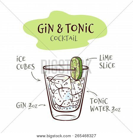 Vector Illustration Of Gin And Tonic Cocktail Recipe With Proportions Of Ingredients.