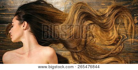 Very Long Hair On Wooden Background. Beautiful Model With Curly Hairstyle. Hair Salon Concept. Care