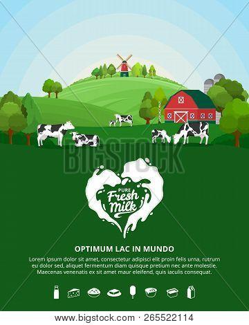 Vector Milk Illustration With Milk Splash, Farm, Cows And Calves
