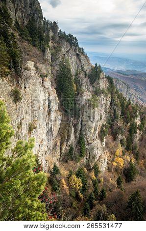 Autumn In Cozia, Carpathian Mountains, Romania. Colorful Autumn Leave. Vivid Fall Colors In Forest.