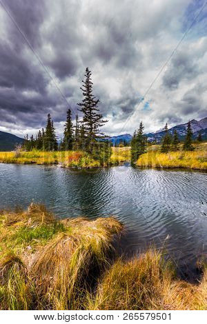 The lakes, yellow autumn grass and firs of Canada. Autumn wind drives ripples in the dark water. The valley along the Pocahontas road. Concept of photo-tourism and active tourism