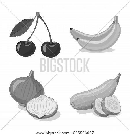 Isolated Object Of Vegetable And Fruit Sign. Set Of Vegetable And Vegetarian Stock Vector Illustrati