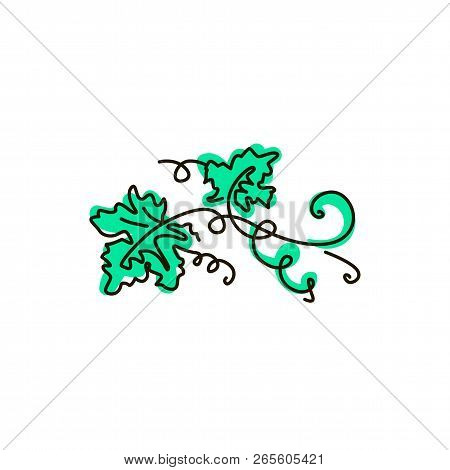 Vector Line Icon. Grape Leaves. One Line Drawing. Isolated On White Background. Continuous Single On