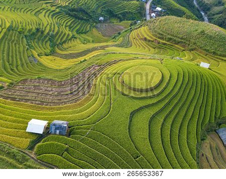 Top View Of Beautiful Vietnam Landscapes With Terraces Rice Field. Rice Fields On Terraced Of Sapa,
