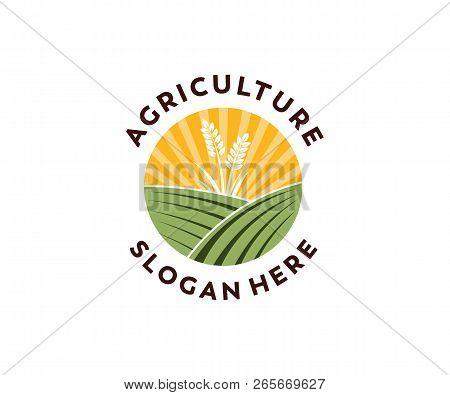 Vintage Country Corp Farm Vector Logo Design Inspiration