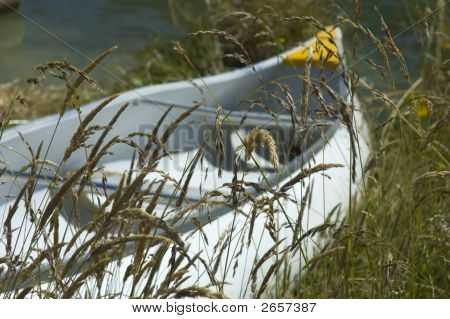 Kayak In The Grass