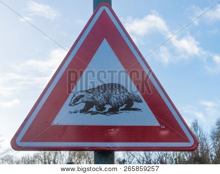 Valkenburg, Limburg, The Netherlands -january 1 2018: Badger Crossing Warning Sign On The Side Of A